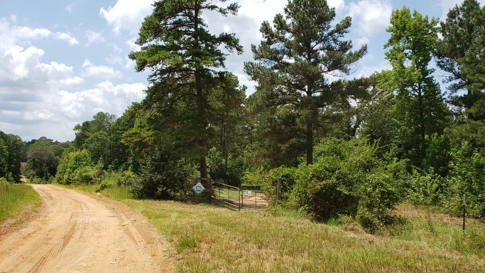 RURAL ACREAGE FOR SALE IN EAST TEXAS