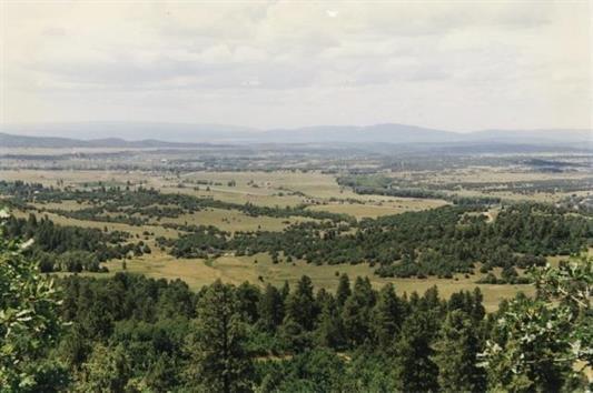 Recreational Mountain Property For Sale Ponderosa Near Chama