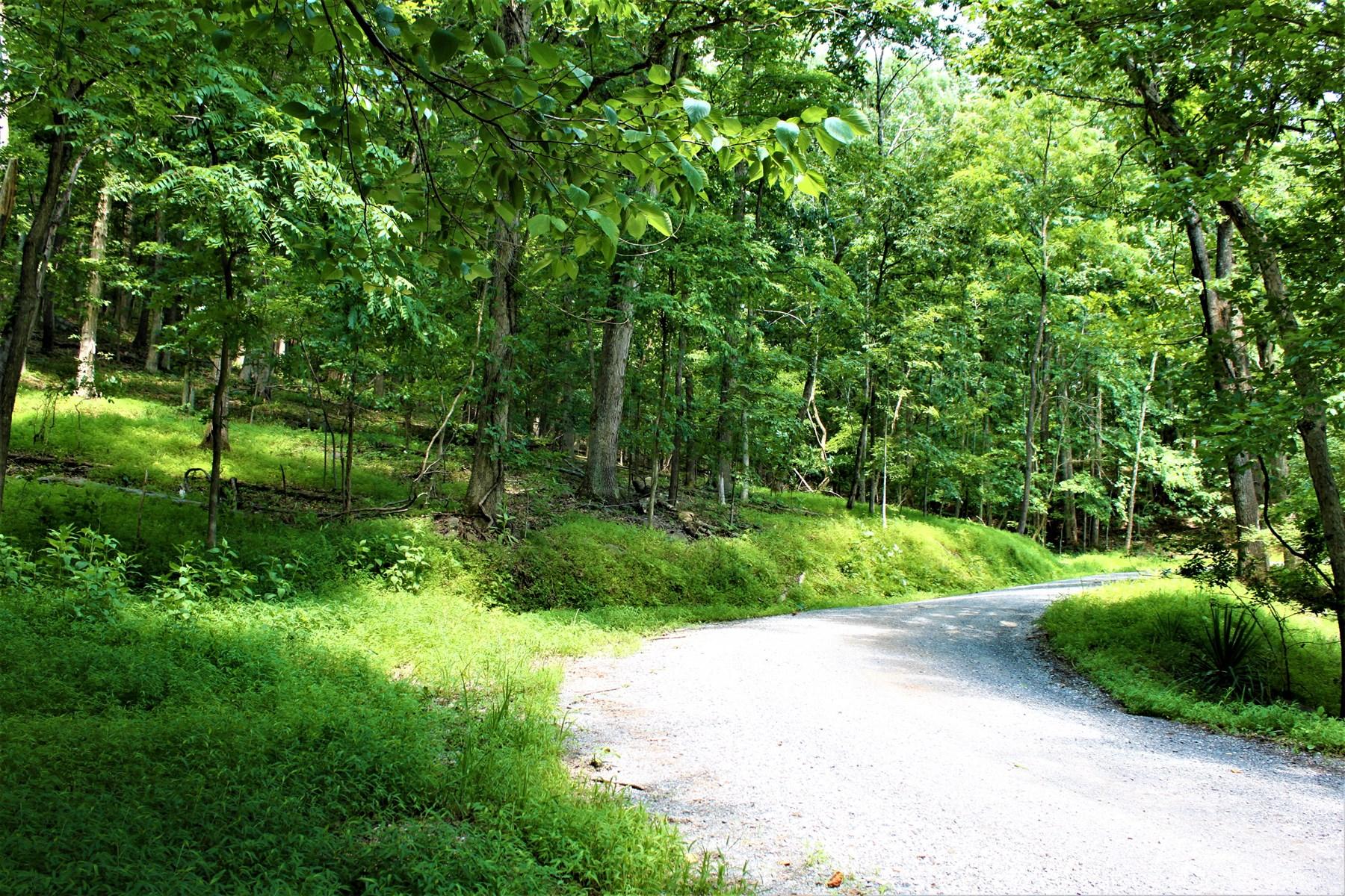 20+ acres: Wooded Mountain Land Near Smith Mountain Lake