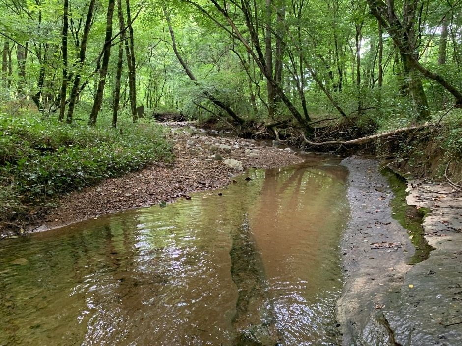Acreage with a creek for sale in Iorn City TN