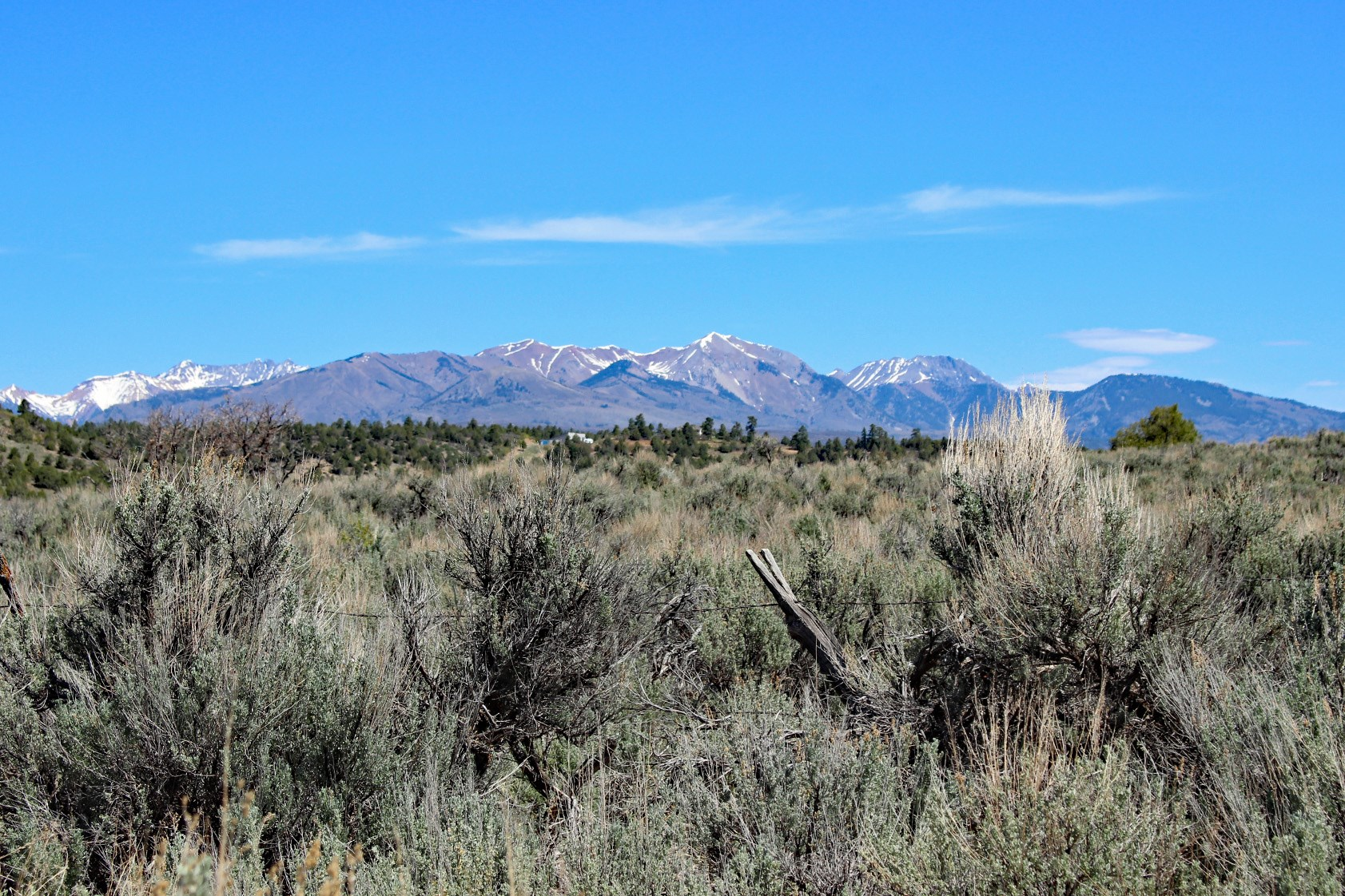 RARE ACREAGE FOR SALE MINUTES FROM DURGANO, CO!