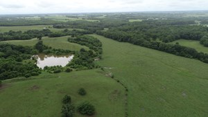 TRACT 1 – 125+/- ACRES, HUNTING, PONDS, CREEK, OPEN FIELDS