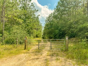 57 ACRES HUNTING/RECREATIONAL LAND FOR SALE WAYNE COUNTY, MS