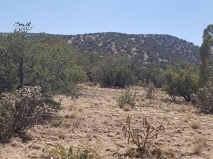 80± ACRES OF PRIVATE SECLUDED LAND FOR SALE IN SANTA FE CO