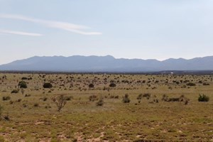 TORRANCE COUNTY NEW MEXICO LAND FOR SALE WITH MOUNTAIN VIEWS