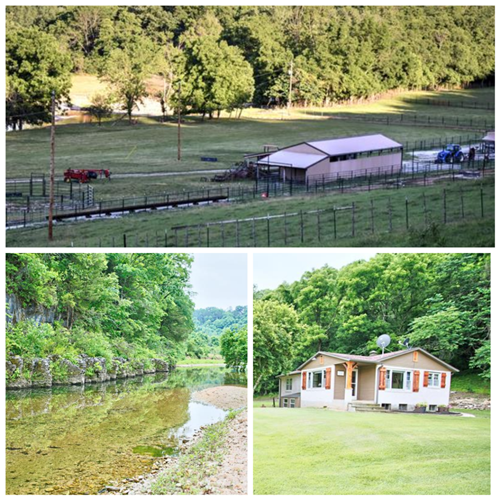 Farm & Cattle Ranch with Home For Sale in Douglas County, MO