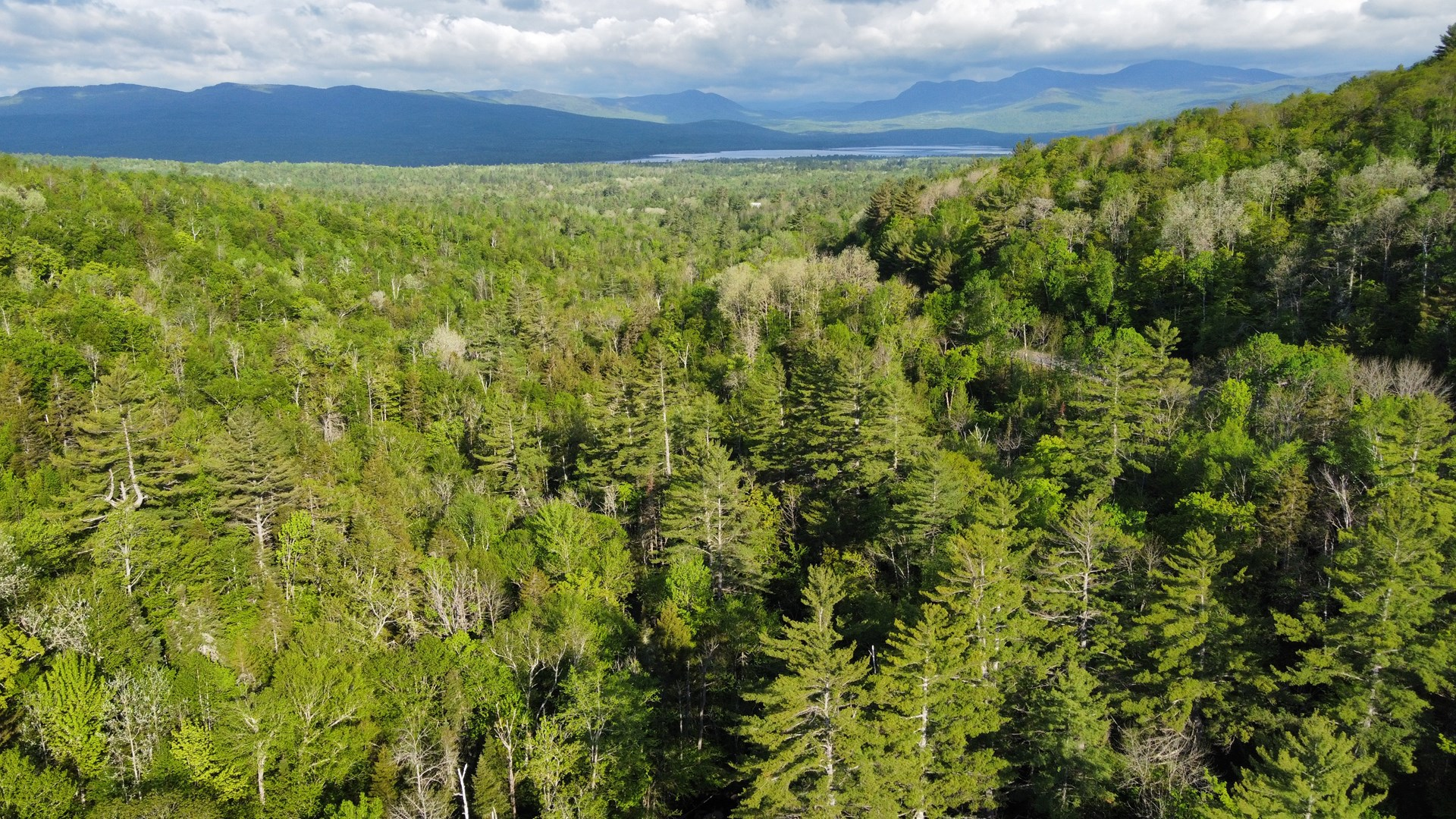 Land for sale in Perkins Plantation, Maine