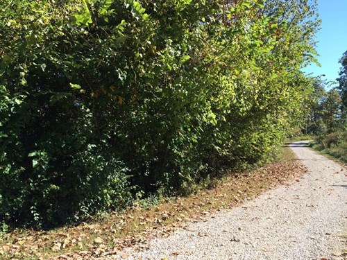 Residential building lot for sale in Hermann, Mo!