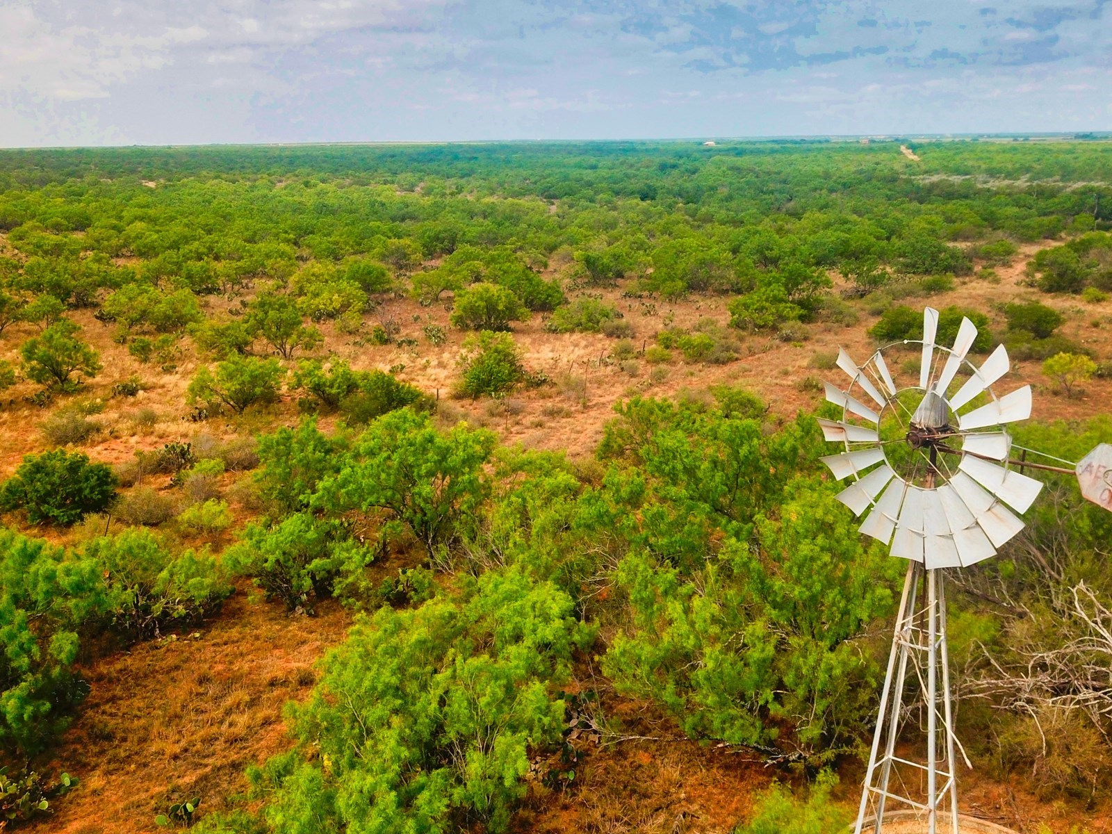 PRIME SOUTH TEXAS HUNTING RANCH