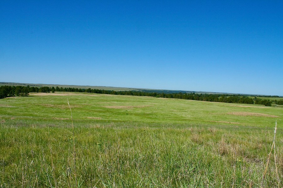 Nebraska Hardgrass Ranch for Sale