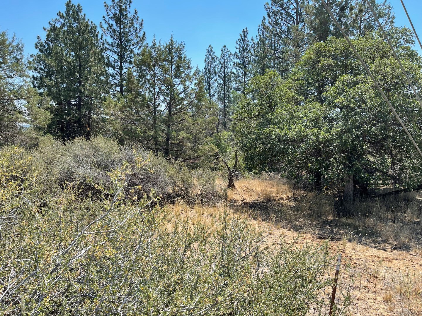 Land for Sale in Yreka