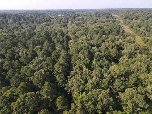 Wooded Lot in Arkadelphia Arkansas for Sale