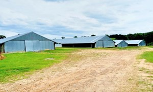 6 HOUSE BROILER POULTRY FARM FOR SALE CENTRAL MS