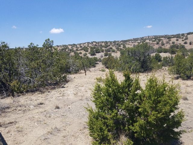 40± Acres For Sale near Santa Fe, New Mexico with Mountains