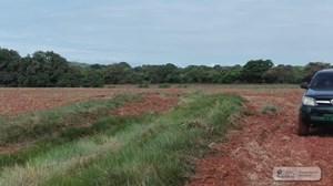 18 HECTARES LAND FOR SALE IN LA PEÑA SANTIAGO PANAMA