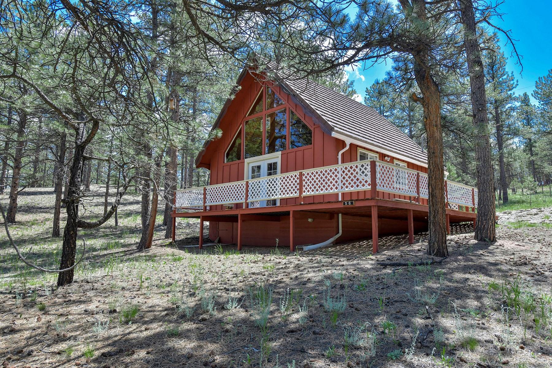Colorado Mountain Getaway Cabin in Florissant Colorado