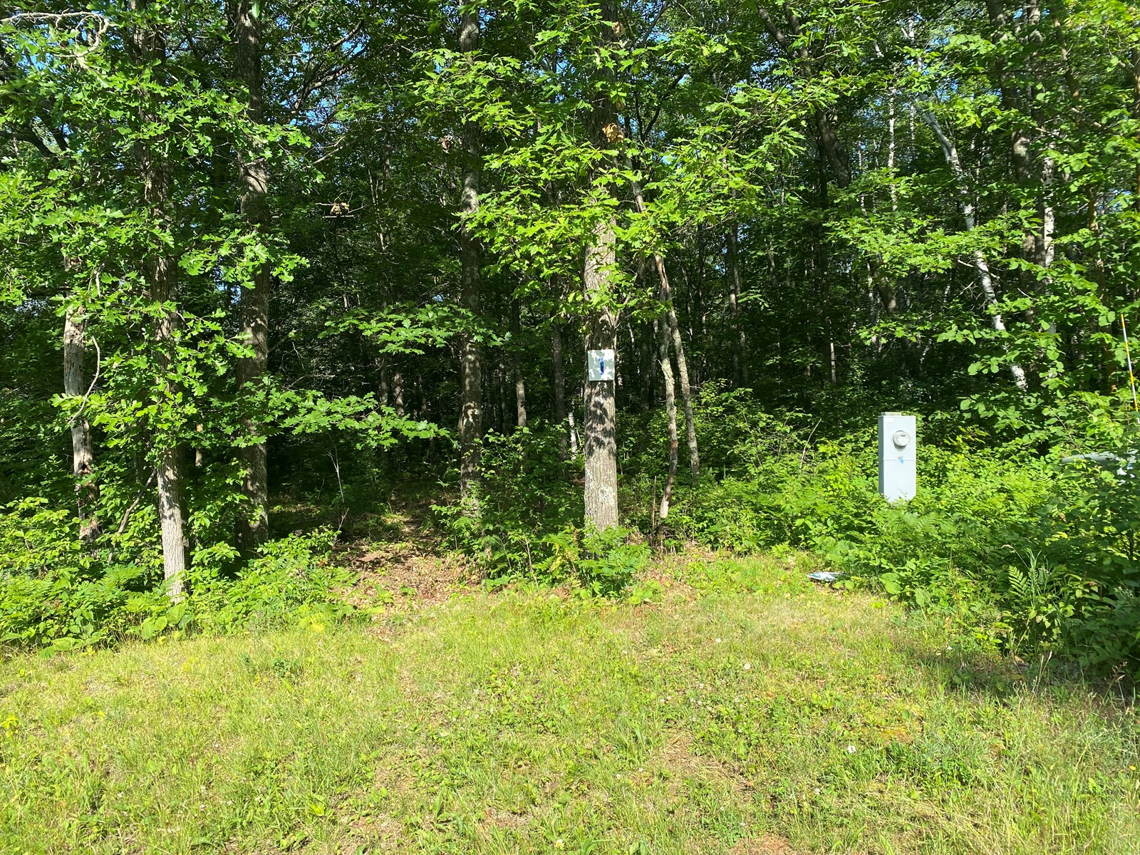 Ready-To-Build 6± Acre Lot For Sale In Sandstone MN