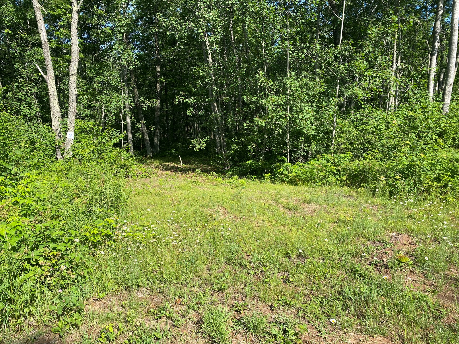 Ready-To-Build 1.8 Acre Lot For Sale In Sandstone MN