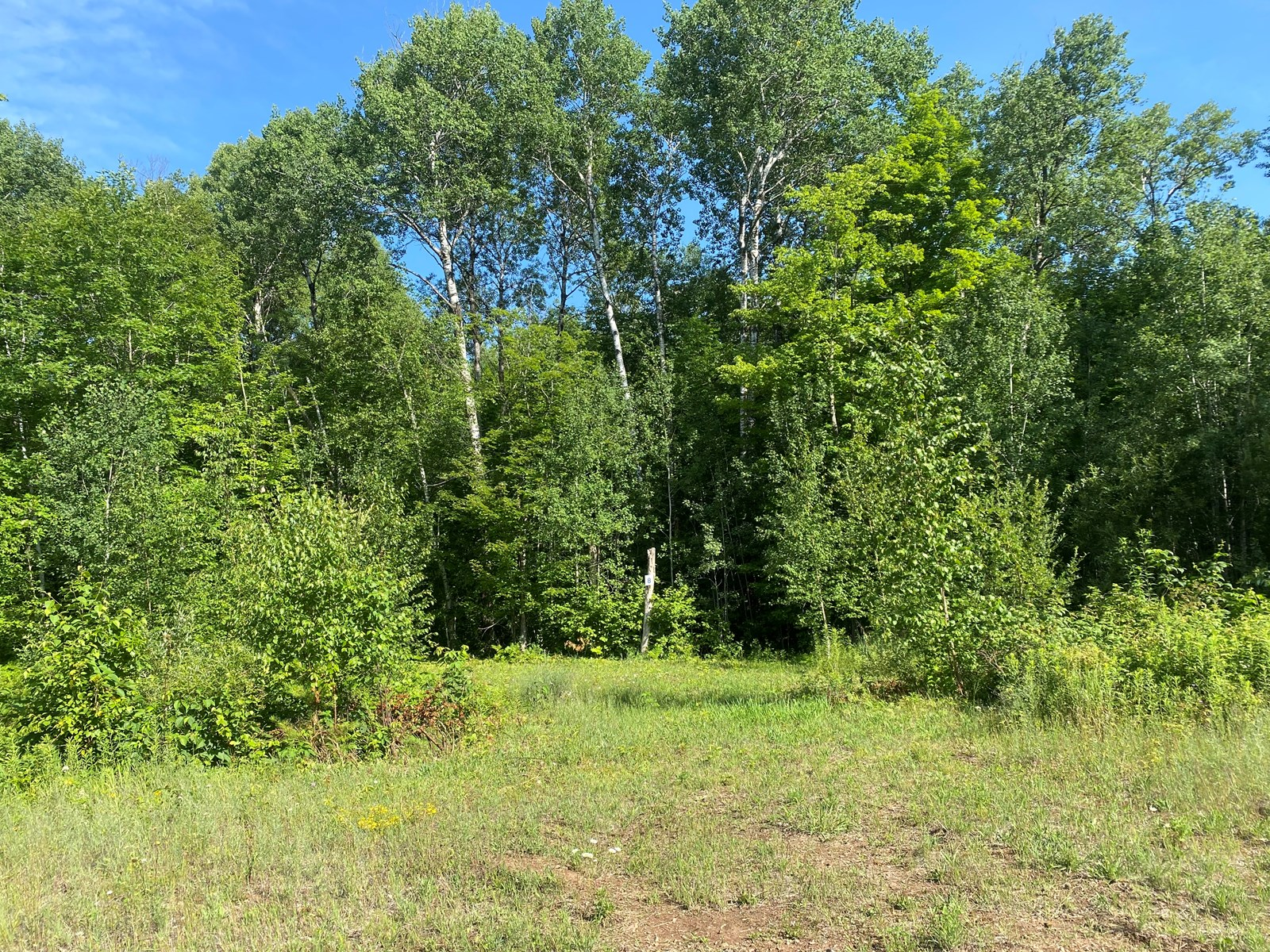 Ready-To-Build 1.88 Acre Lot For Sale In Sandstone MN