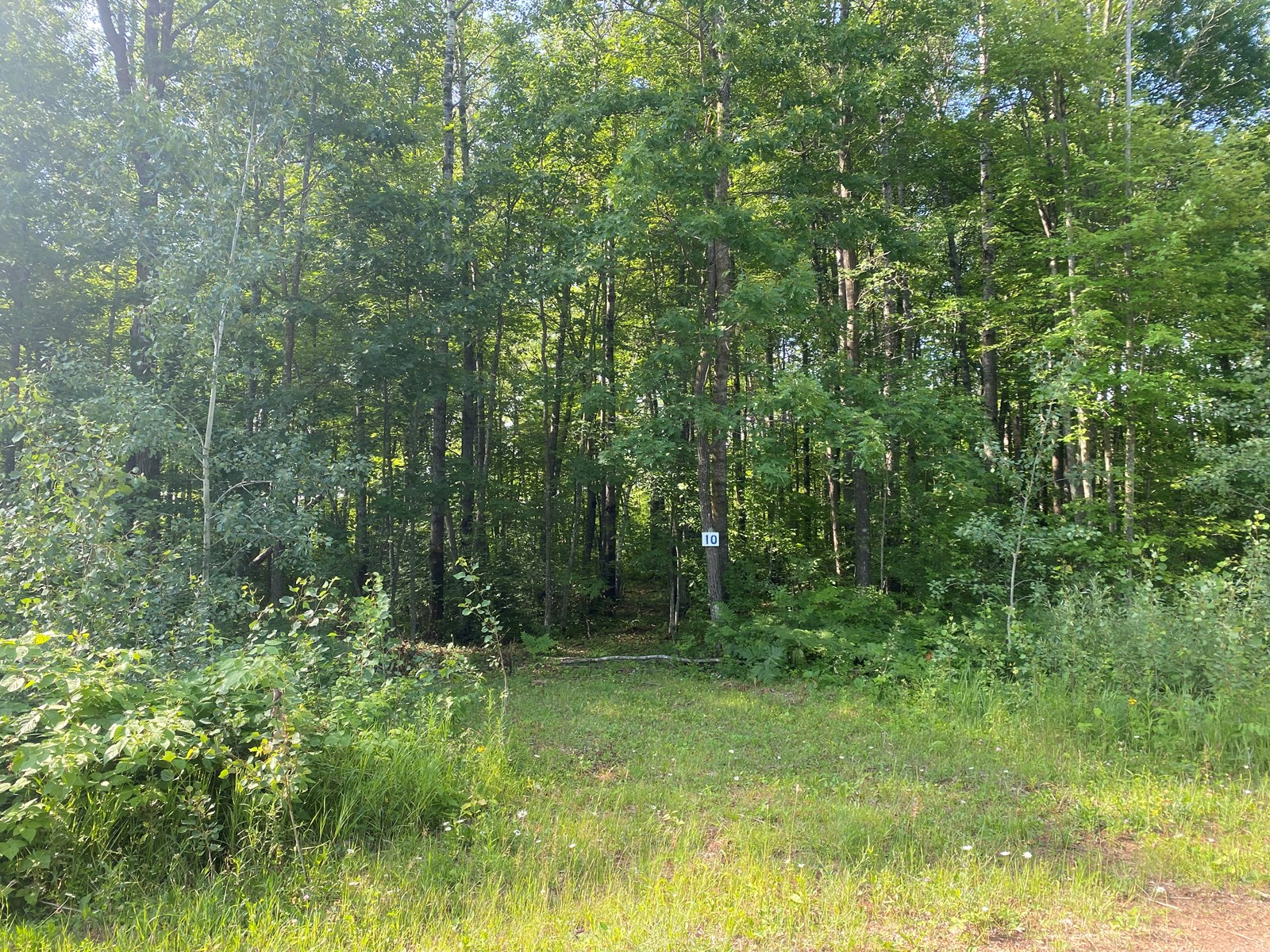 Ready-To-Build 3.1 Acre Lot For Sale In Sandstone MN