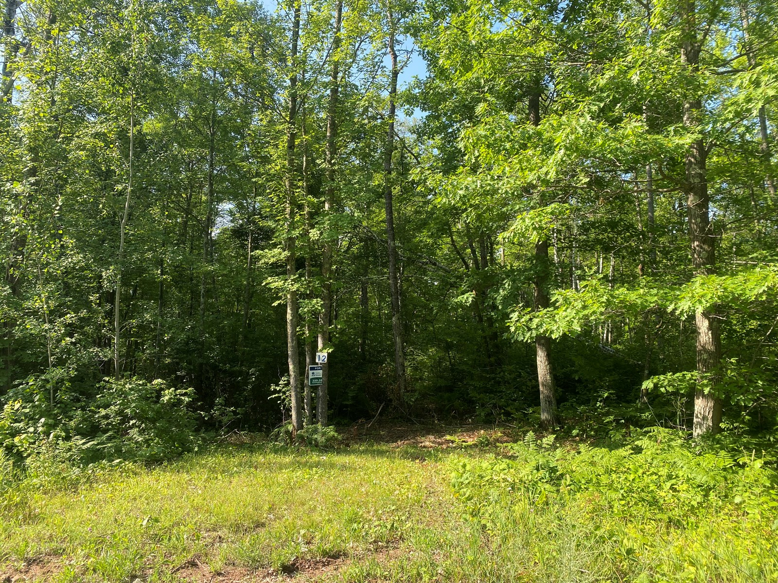 Ready-To-Build 2.6 Acre Lot For Sale In Sandstone MN