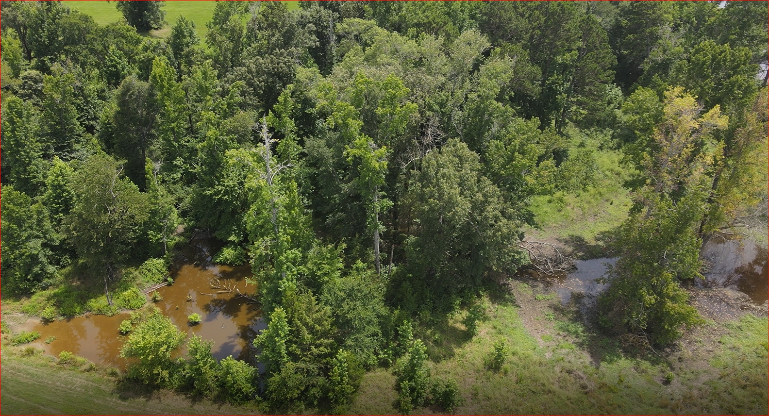 Cass County, TX Pastureland for sale