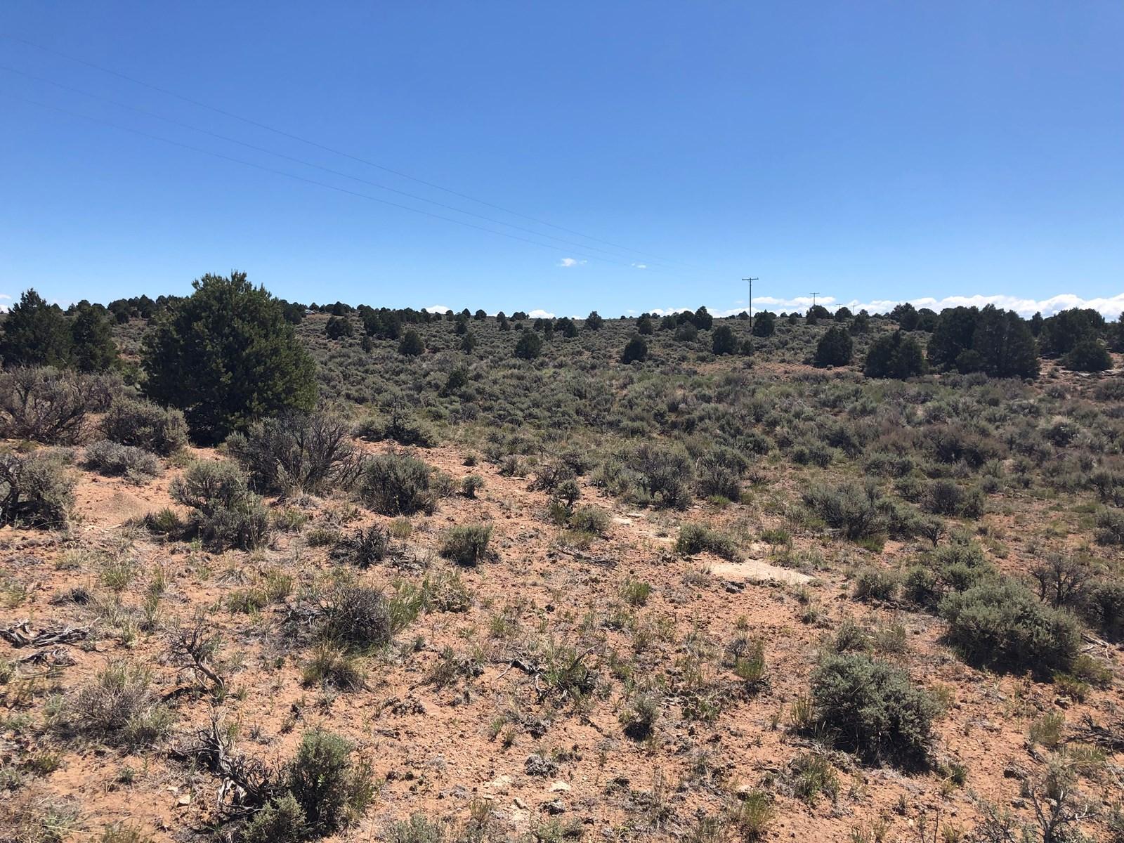 40 acres Glade Park, Colorado land