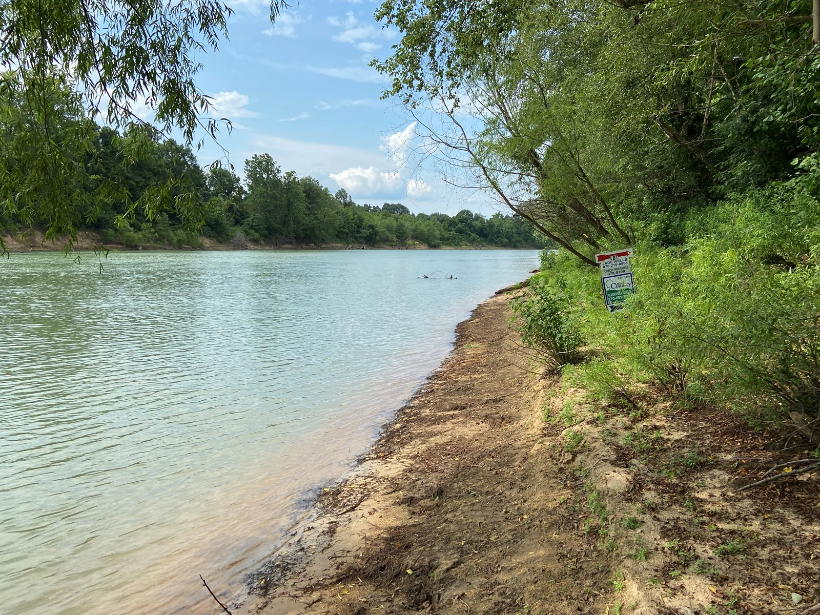 Riverfront Land for sale in Arkansas Lots on Current River