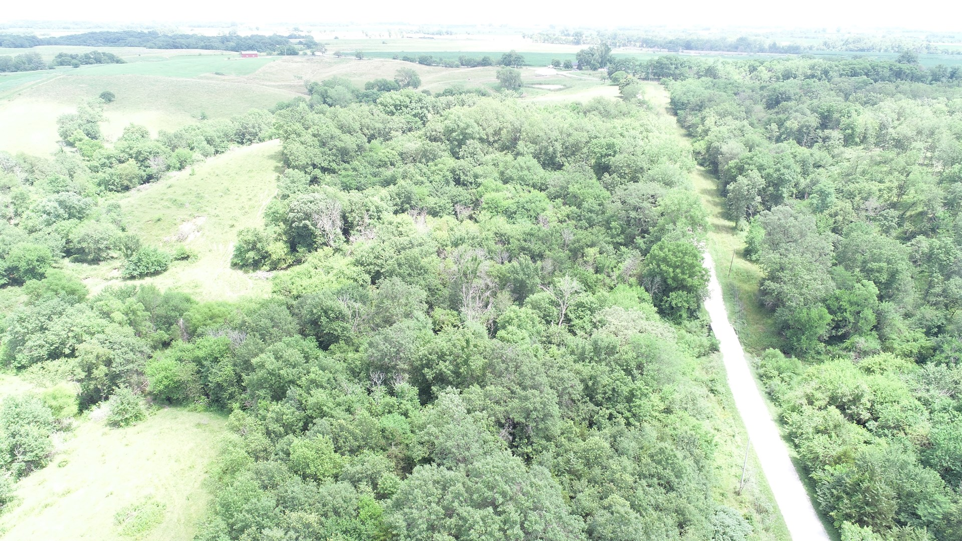 Heavily Timbered Recreational Land for Sale