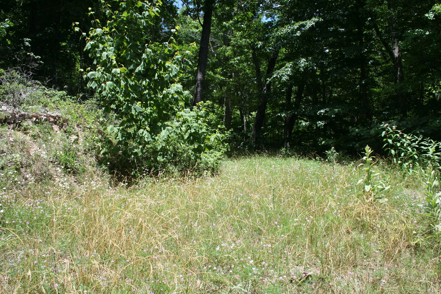 Nice building lot for sale in Northern Highland County
