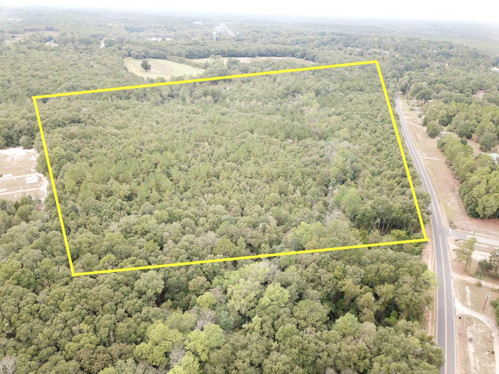 32 acres of Land for Sale in Geneva, Alabama