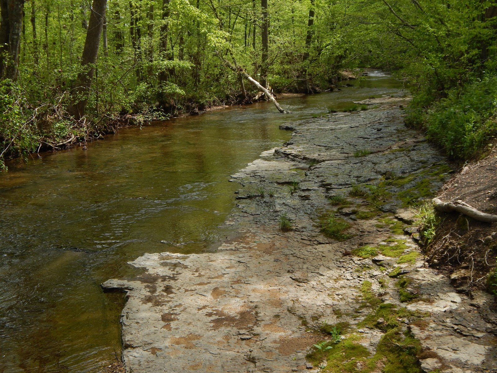Country Home, Creek, 2.3 Wooded Acres For Sale in Tennessee