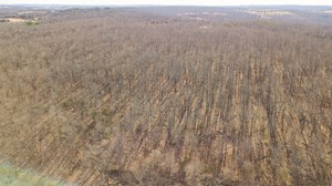 TIMBER LAND FOR SALE IN HILLTOP COMMUNITY HARRISON