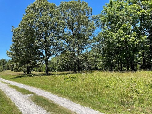 ACREAGE FOR SALE IN THE OZARK MOUNTAINS