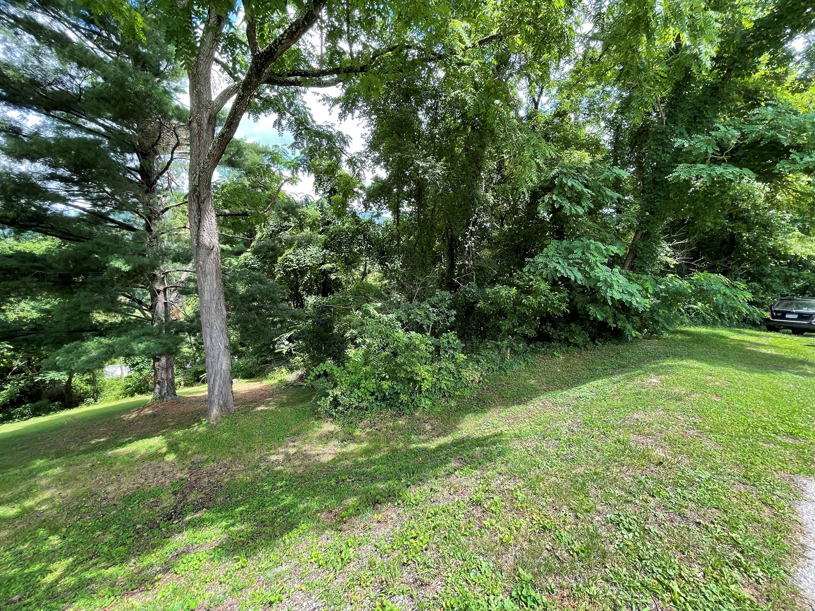 Wooded Lot for Sale in Narrows VA!
