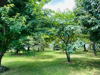 10.3 Acres Ranch For Sale In Greenfield, Mo