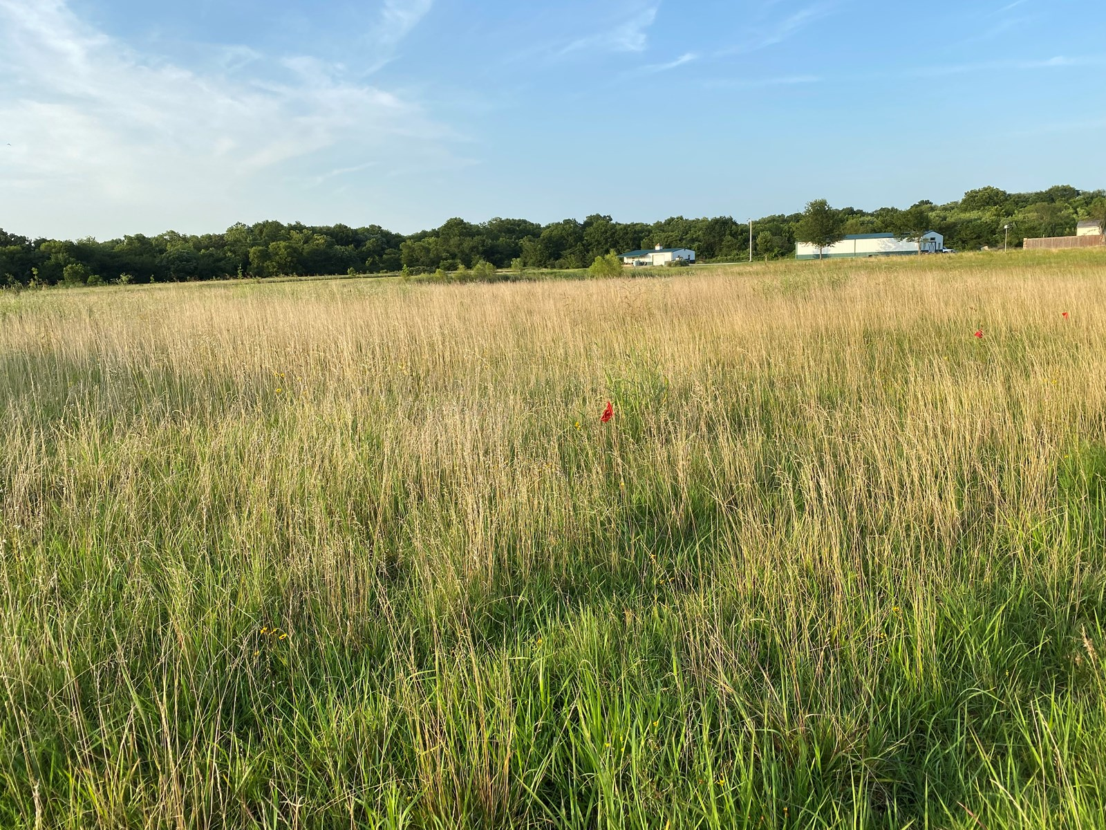 Home Building Lot For Sale in Pryor, Oklahoma