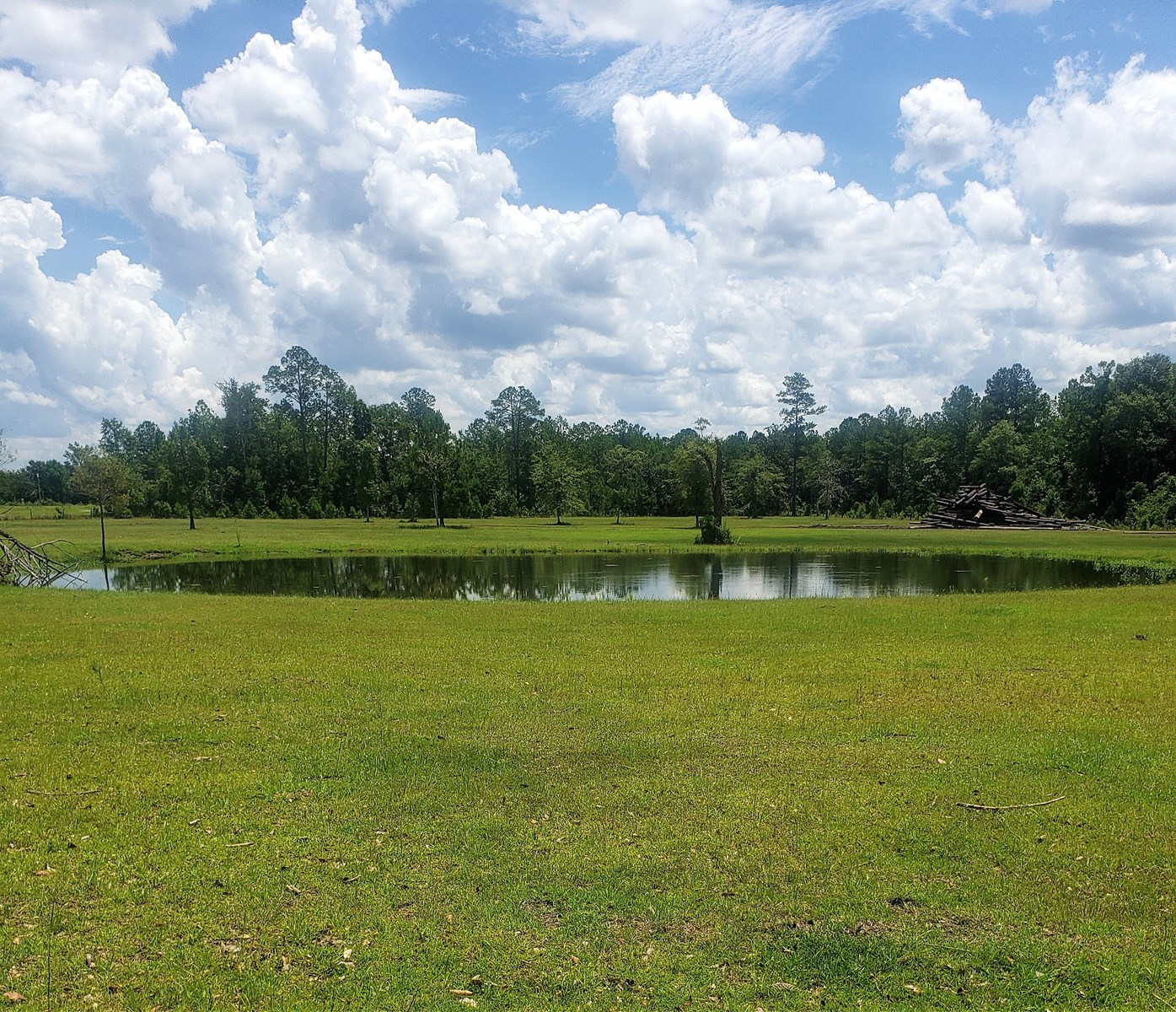 Like Freedom From The City? 33 acres out in the Country!