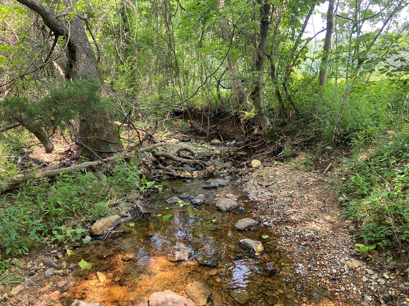 Land in north Arkansas 16 +/- acres, live creek, Hunting