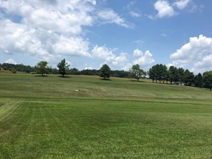 1 ACRE LOT IN BLOUNTVILLE, TN LAND FOR SALE