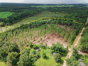 14 +/- ACRES FOR SALE IN SLOCOMB, AL