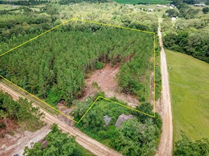 8.6 +/- ACRES FOR SALE IN SLOCOMB AL