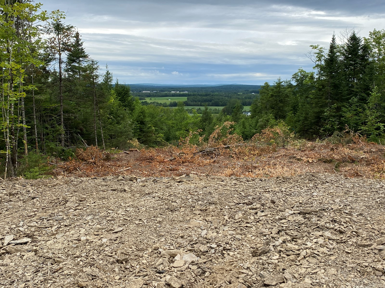 Aroostook County Land for Sale