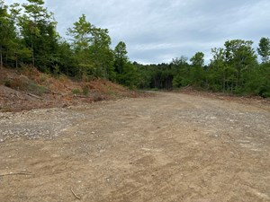 LAND FOR SALE HOULTON MAINE