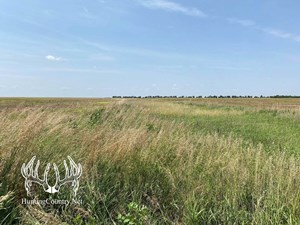 61 ACRES M/L. SUMNER COUNTY KANSAS LAND FOR SALE