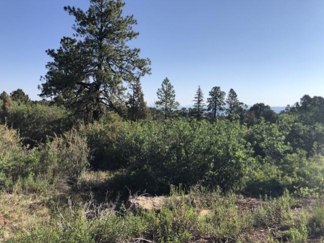 Land For Sale, Dave Wood Road, Montrose, Colorado