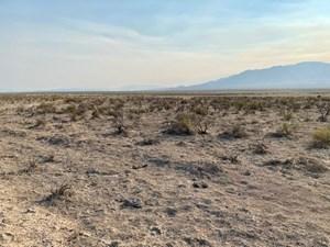 LAND FOR SALE GOLCONDA, NEVADA