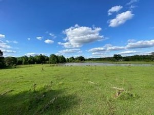 70 ACRES PASTURE LAND FOR SALE WEST LINCOLN COUNTY, MS