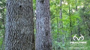 BIG WHITE OAK TIMBER 52 ACRES LOCATED IN ADAMS COUNTY OHIO