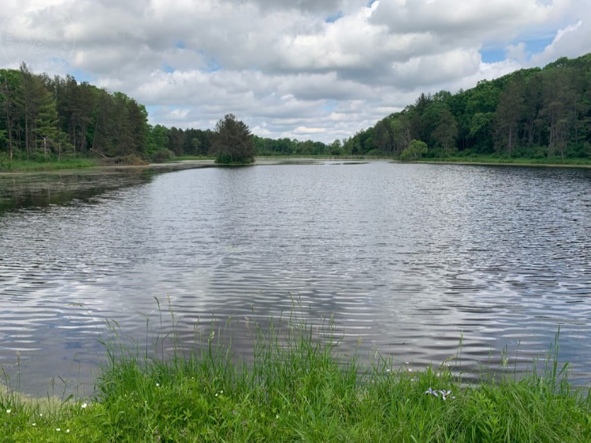40 acre parcel building site, great hunting, fishing and rec